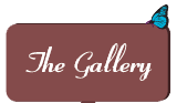 Go to: The Gallery